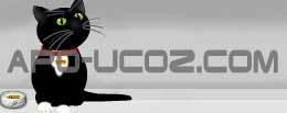 apo-ucoz.com